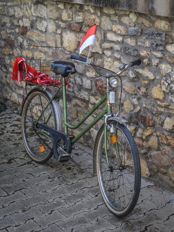 Fahrrad für Lev
